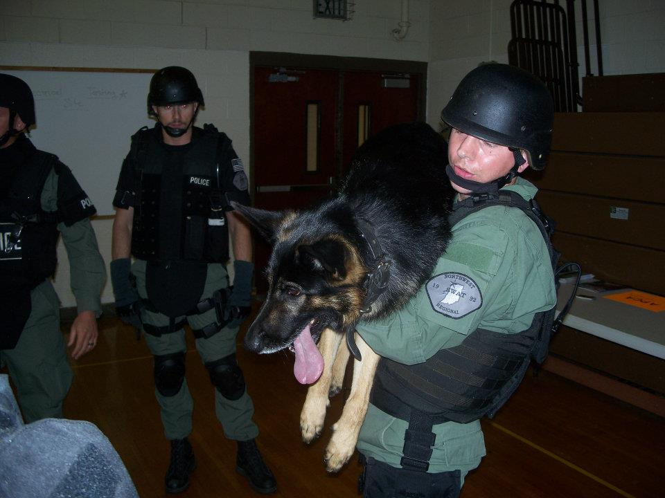K-9 SWAT deployment training. The dogs are walked around us, over us, and made to lay on us for familiarity. They are also picked up and passed between us.